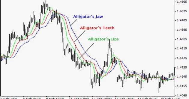 alligator-indicatore.jpg