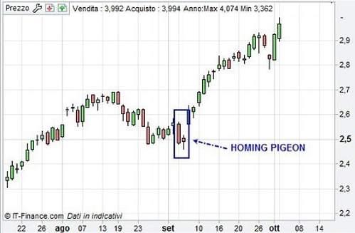 homing-pigeon.jpg